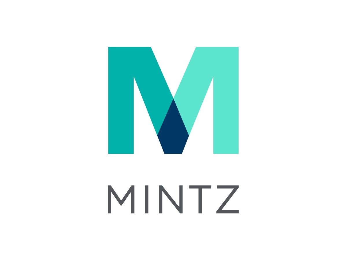 Mintz - ML Strategies